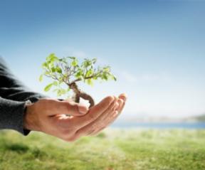 coltivare_secondo_natura.jpg